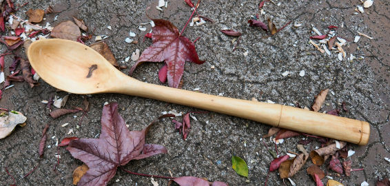 wooden serving spoon a3