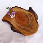 small macadamia wood bowl for sale
